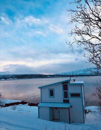 Magic in the Arctic
