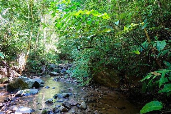 Chiang Mai Eco Trekking