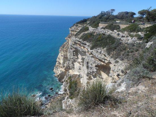 Punto de Informacion Parque Natural La Brena Y Marimas del Barbate