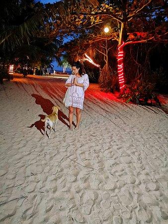 Sur la plage au soir un peu plus loin restaurant amal