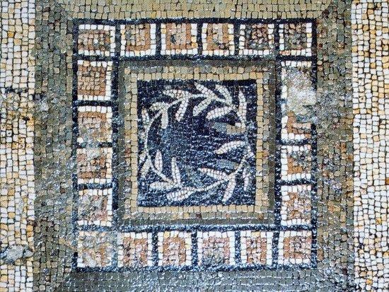 Domus e Mosaico del Leone