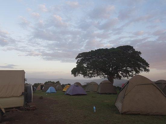 Borbo Safaris