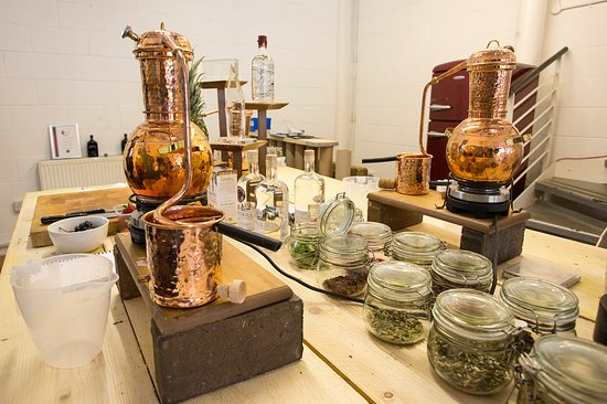 Crossbill Gin School