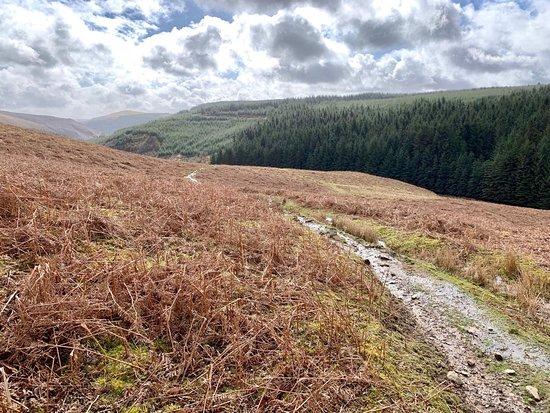 Llanwrtyd Wells Photo