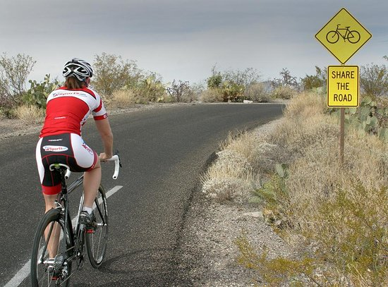 Tucson Bicycle Rental