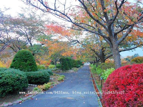 Otaru, Japon: 手宮植物園
