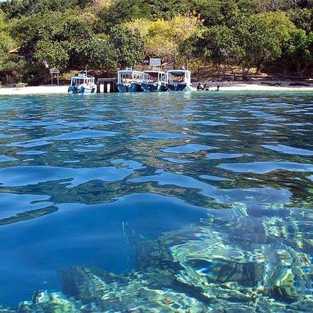 Menjangan Island Pemuteran 2019 All You Need To Know Before You