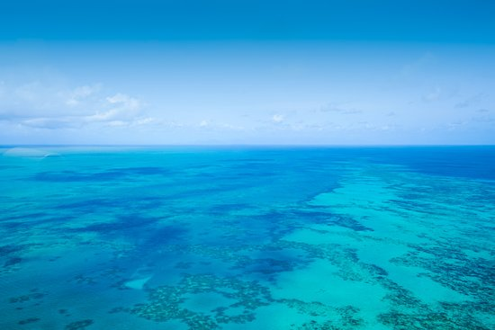 Grande barrière de corail, Australie : Who dreams of exploring the Great Barrier Reef by scenic flight? The highlight for me was spotting turtles and stingrays from the air!
