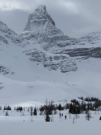 Kootenay Rockies, Kanada: Snowshoeing through larch meadows above the lodge, below The Talon.