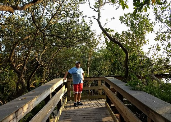 Lemon Bay Park (Englewood) - 2020 All You Need to Know ...