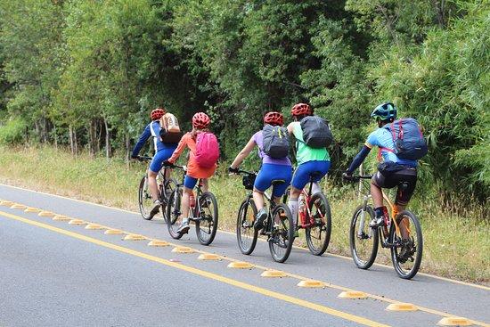 Ciudad La Union, Chili: La parte de la ruta habilitada con ciclovía en la vuelta del Lago Ranco.  Al final Eduardo, uno de los guías acompañandonos todo el tiempo. :-)