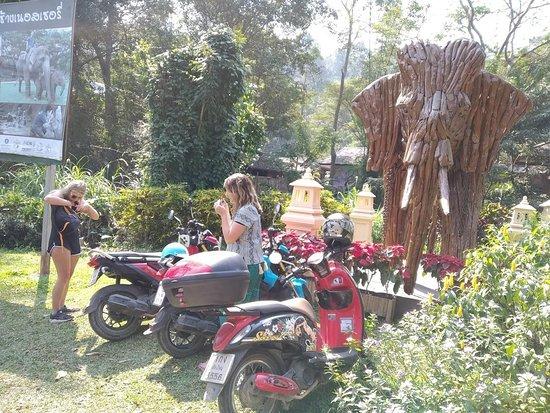 Chiang Mai Scooter Tours