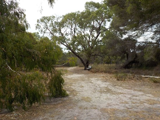 Belvedere Reserve