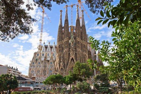 優先入場: バルセロナ サグラダ・ファミリアツアー