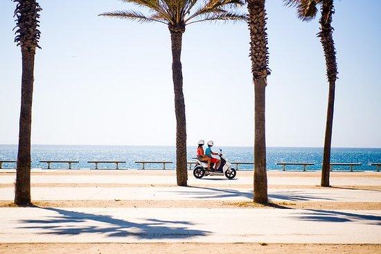 Tour di Formentera Autonomo con