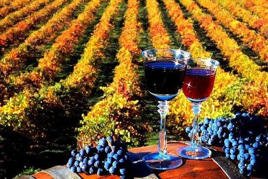 4-daagse wijntour in Moldavië vanuit ...