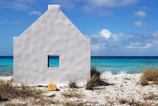 Discover Bonaire Sightseeing Tour