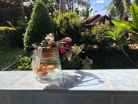 Zama Resort Photo