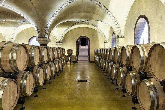 Degustação de vinhos Amarone em...