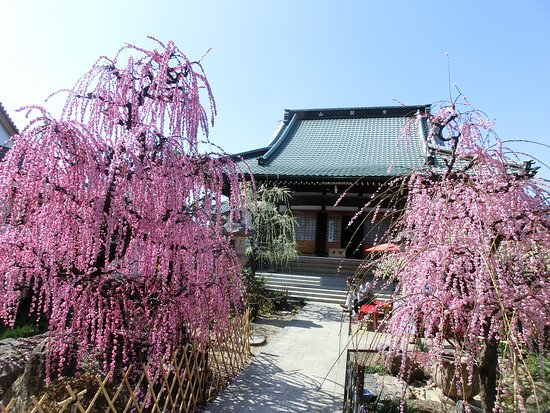 Koju-ji Temple