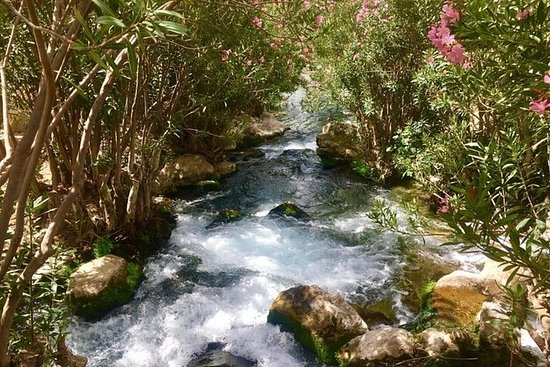 Day Trip to Algar Waterfalls and...