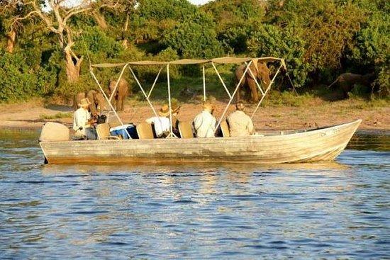 10天博茨瓦纳冒险和维多利亚瀑布野生动物园(露营)