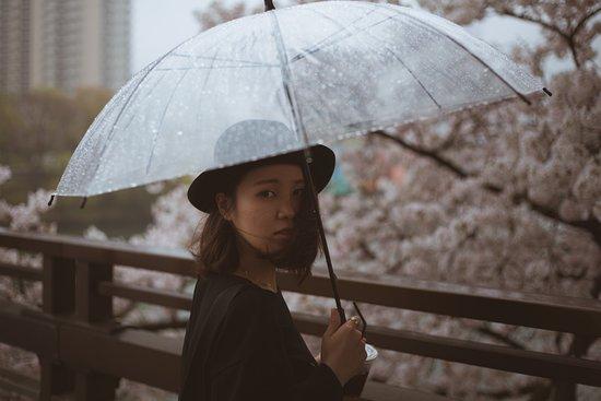 Japan Trip Photography