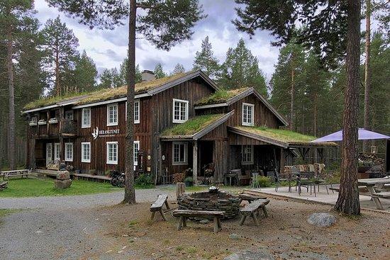 TRANSFER, STANDARD, 1-7 PAX: Bergen...