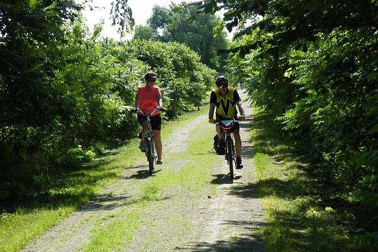 Tour à vélo à Erie Shores et Pelee