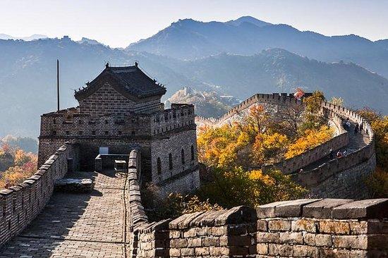 Where to buy bonsai - Tianjin Forum - TripAdvisor