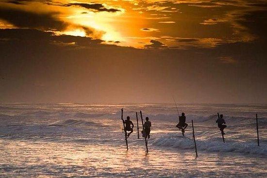 Sri Lankan South Beach Tour Package 5...