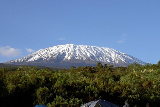 13 Days Adventure i Tanzania ...