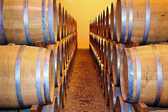 私人旅游:里斯本市的葡萄酒