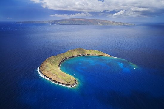 Molokini Crater og Turtle Town...