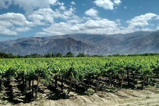 Reisen Sie 17 Tage nach Mendoza...