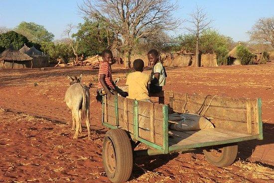 Village Tour i Livingstone
