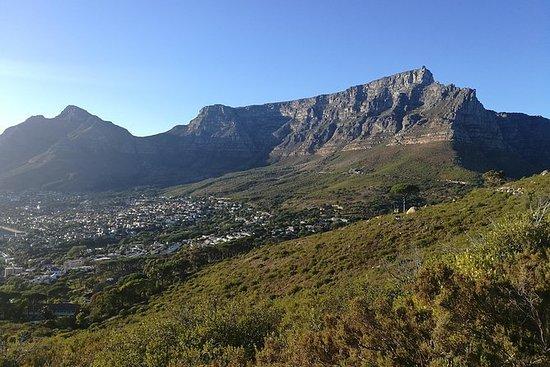 Excursão pela Table Mountain, City e...