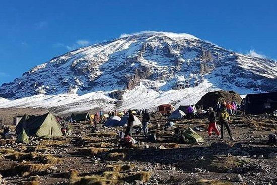 キリマンジャロ登山マチャメルート7日