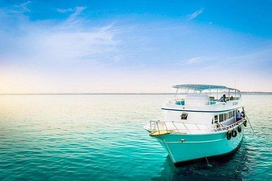 Privatbåt Rødehavet