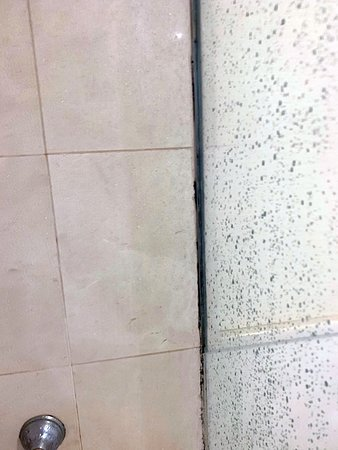Regal Pacific Hotel Buenos Aires : The corner where the glass of the shower meets the wall has all mildew.