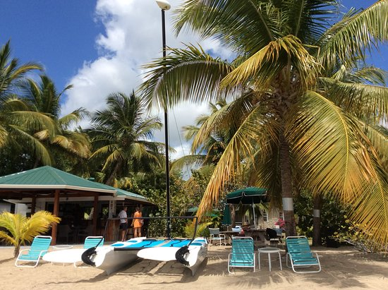 Lance aux Epines, Grenada: Bar view from the sea