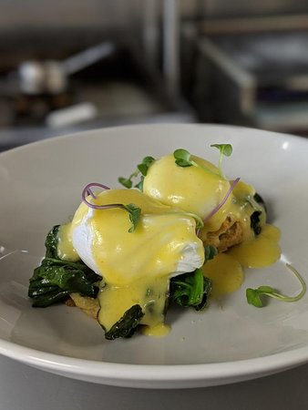 Eggs Benedict:  Free Range Eggs, house sage biscuit, hollandaise, Heritage Farms bacon & wilted greens