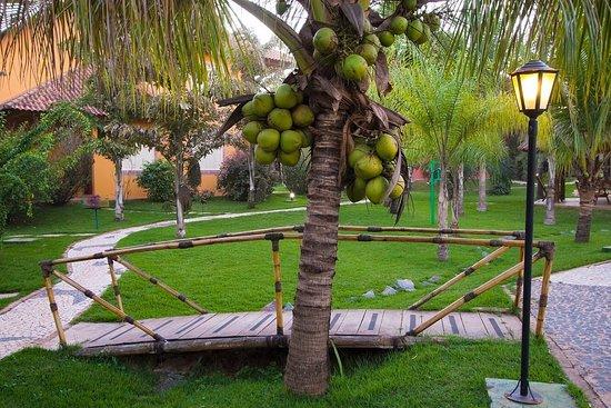 Hotel Pousada Águas de Bonito: Jardim - Acesso piscina e hidromassagem