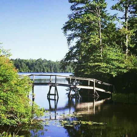 Eagles Mere, PA: Footbridge in Summertime
