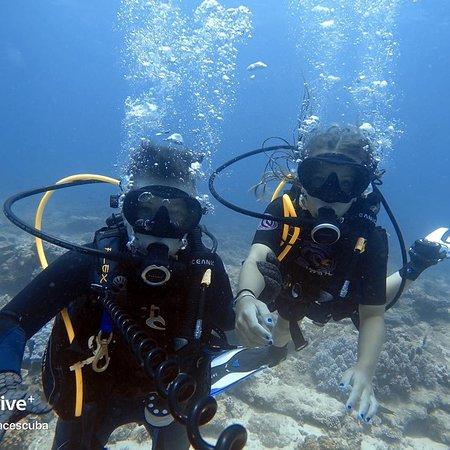 Subsurface Scuba