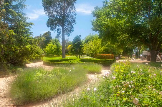 Sale Botanic Gardens: View natural gardens as you meander though