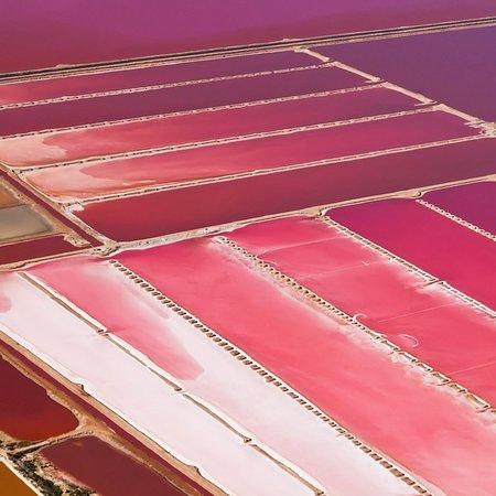 Seddon, New Zealand: La surreale colorazione di Lake Grassmere in Nuova Zelanda è dovuta all'intensa evaporazione a cui lo specchio d'acqua è sottoposto: il lago ha una superficie di 17 chilometri quadrati circa e non ha immissari. I venti caldi e le elevate temperature della regione provocano un aumento della concentrazione dei sali disciolti nell'acqua, che tingono di rosa la laguna.