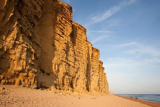 Sites de rencontres Dorset
