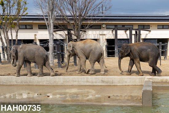 動物園 京都