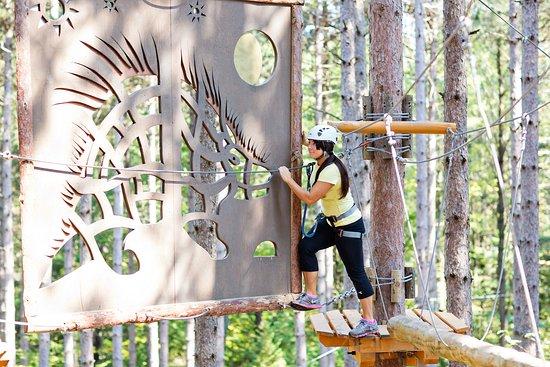 Treetop Trekking - Ganaraska